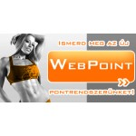 Web Point
