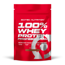 100% Whey Protein Professional - 500 g