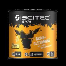 BCAA+Glutamine, 300g